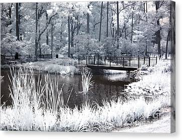Surreal Infrared Art Canvas Print - Dreamy Surreal South Carolina Pond Landscape by Kathy Fornal