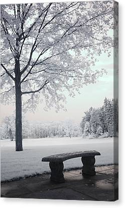 Dreamy White Blue Infrared Michigan Landscape Canvas Print by Kathy Fornal