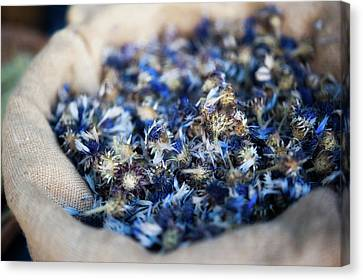 Dried Blue Flowers In Burlap Bag Canvas Print by Alexandre Fundone
