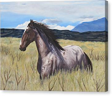 Drinker Of The Wind Canvas Print by Melody Perez