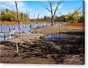 Canvas Print featuring the photograph Drought In The Flint Hills by Lawrence Burry