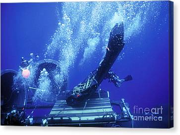 Dry Deck Shelter Rewmen Release Canvas Print by Michael Wood