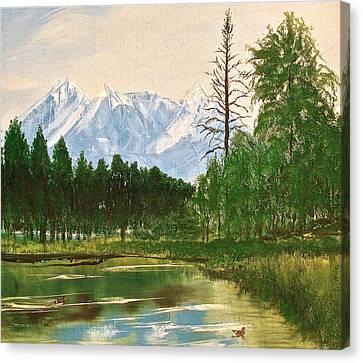 Duck Pond Canvas Print by Frank SantAgata