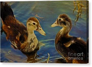 Duckling Playmates Canvas Print