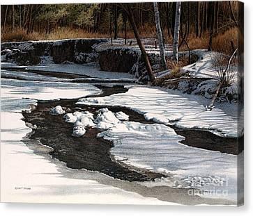 Duffins Creek II Canvas Print