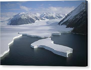Dugdale And Murray Glaciers Antarctica Canvas Print by Tui DeRoy