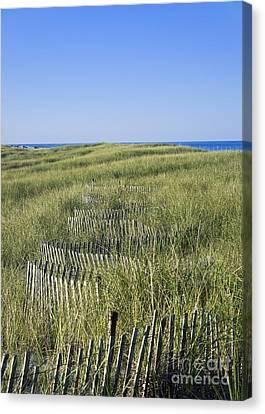 Dune Fence Canvas Print by John Greim