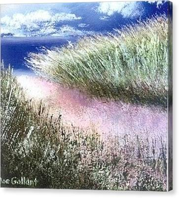 Dune Path Canvas Print by Joseph Gallant