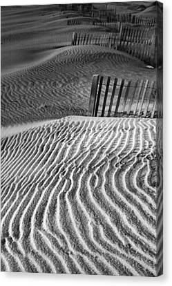 Dune Patterns Canvas Print by Steven Ainsworth
