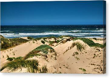 Dunes And The Pacific Canvas Print by Steven Ainsworth