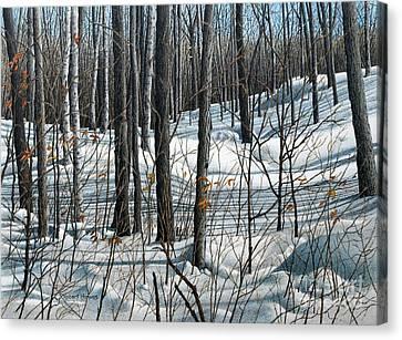 Durham Forest Canvas Print