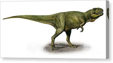 Duriavenator Hesperis, A Prehistoric Canvas Print by Sergey Krasovskiy