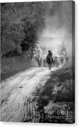 Dusty Trail Canvas Print by Fred Lassmann