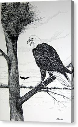 Eagle At Nest Canvas Print by John Smeulders