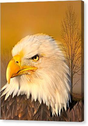 Eagle On Guard Canvas Print by Marty Koch