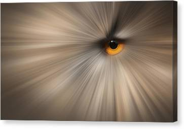 Eagle Owl Eye Abstract Canvas Print by Andy Astbury