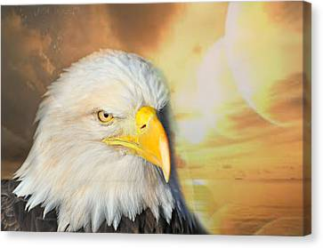 Eagle Sun Canvas Print by Marty Koch