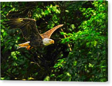 Canvas Print featuring the photograph Eagle Taking Lunch To Her Babies by Randall Branham