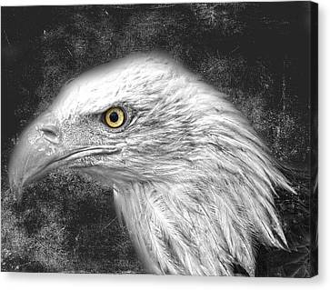 Eagle Two Canvas Print