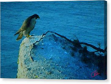 Eagle View Canvas Print by Colette V Hera  Guggenheim