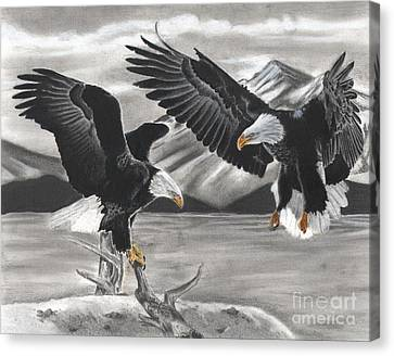 Eagles Canvas Print by Christian Conner
