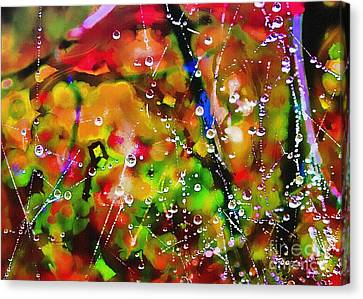 Early Morning Dew Canvas Print by Judi Bagwell