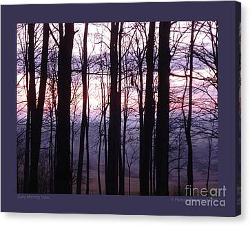 Early Morning Hues Canvas Print by Patricia Overmoyer
