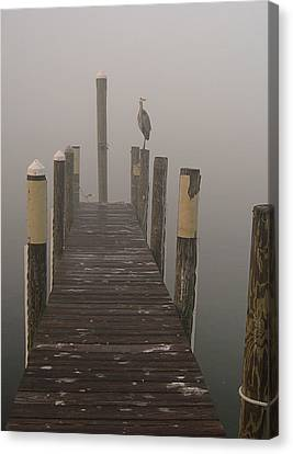 Early Morning On The Dock Canvas Print