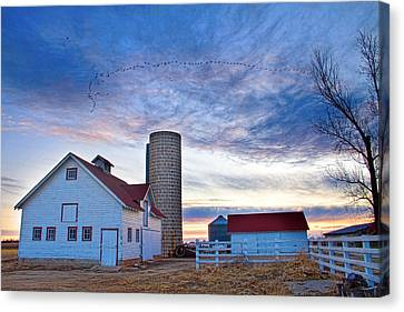 Early Morning On The Farm Canvas Print by James BO  Insogna
