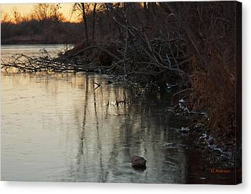 Early Morning Waterline Canvas Print by Edward Peterson