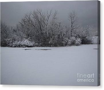 Early Spring Snow Fall Canvas Print by Cedric Hampton