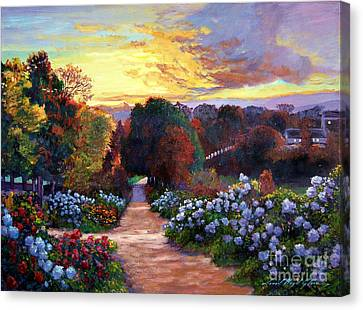 Early Summer Evening Canvas Print by David Lloyd Glover