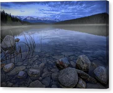 Early Summer Morning On Patricia Lake Canvas Print by Dan Jurak