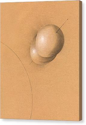 Earth Log I Canvas Print by Albert Notarbartolo