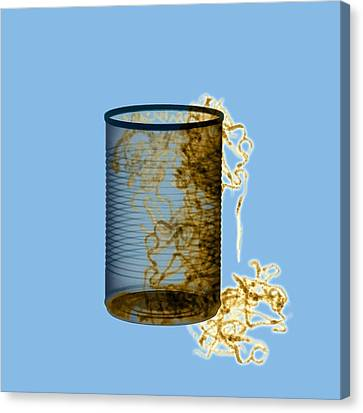 Earthworms In A Can, X-ray Canvas Print by D. Roberts