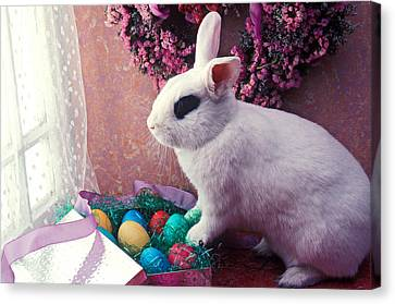 Easter Bunny Canvas Print by Garry Gay