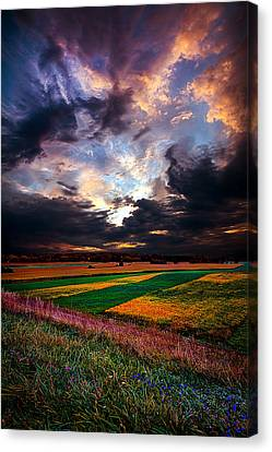 Echos Of Life Canvas Print by Phil Koch