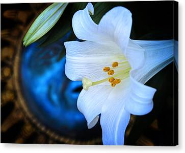 Eclipse With A Lily Canvas Print by Steven Sparks