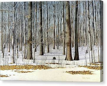 Edge Of The Forest Canvas Print by Conrad Mieschke