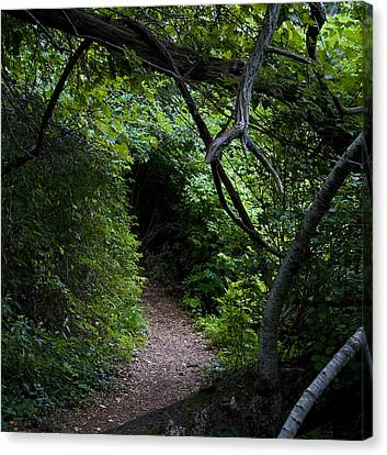 Edge Of The Shire Canvas Print by Michael Friedman