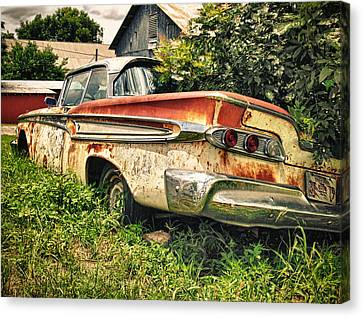 Edsel In The Weeds Canvas Print by Jon Herrera