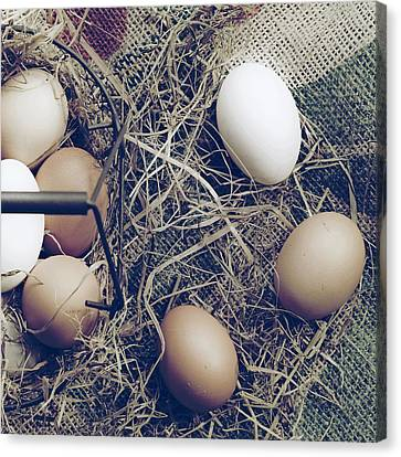 Eggs Canvas Print by Joana Kruse