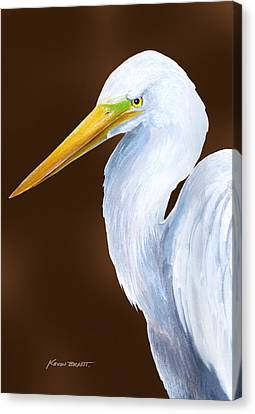 Canvas Print - Egret Head Study by Kevin Brant