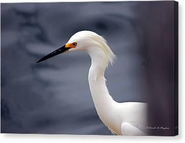 Egret Soft Canvas Print