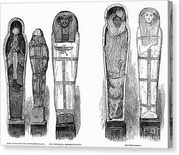 Egypt: Royal Mummies, 1882 Canvas Print