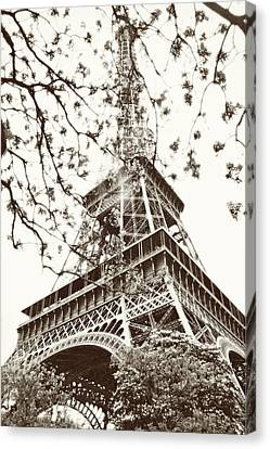 Eiffel Fame Canvas Print by Linde Townsend