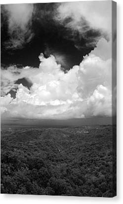 El Yunque National Forest Canvas Print by Julie VanDore