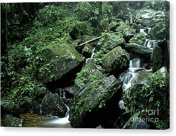 El Yunque National Forest Rocks And Waterfall Canvas Print by Thomas R Fletcher