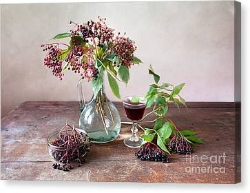 Berry Canvas Print - Elderberries 03 by Nailia Schwarz
