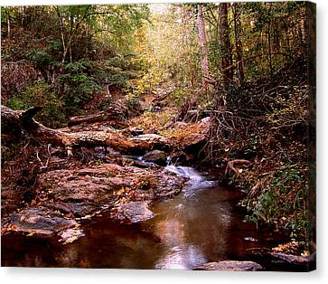 Canvas Print featuring the photograph Elders Bridge by George Bostian